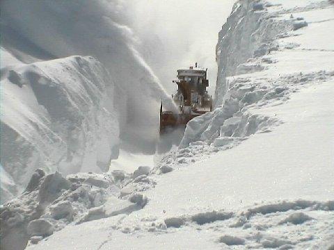 Réunion du Peuple De La Paix le 31 octobre 2014 Tempe%CC%82tes-de-neige-Que%CC%81bec