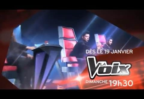 La Voix 2014 saison 2 : Les quatre mentors feront bientôt leur entrée