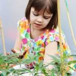 Une petite fille de 8 ans a vu ses crises d'épilepsie disparaître grâce à la marijuana