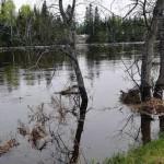 Rivière Jacques-Cartier : La situation s'est améliorée et les routes rouvertes
