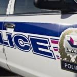 Combats de chiens à Laval : La police demande l'aide des citoyens