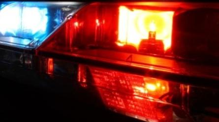 La police recherche activement le tueur de l'autruche Toron : 2000$ de récompense