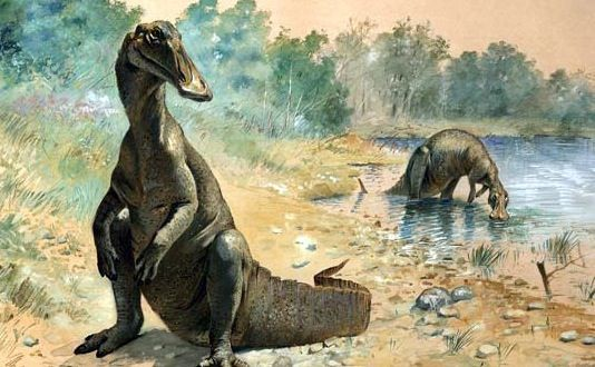 Fossile de dinosaure : La découverte d'un proche de la famille des Hadrosaures