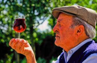 Les vertus et les bienfaits du vin rouge sur la santé remis en question
