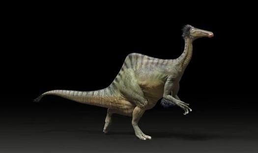 Deinocheirus mirificus : Le mystérieux dinosaure de Mongolie prend forme après un demi-siècle