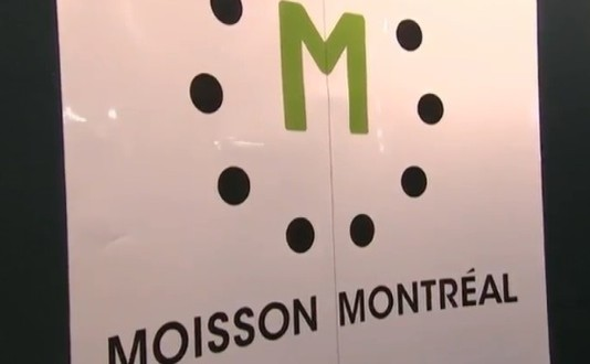 Moisson Montréal : Près de 300 bénévoles pour préparer 11 300 sacs d'urgence